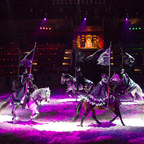 Discount Medieval Times Tickets